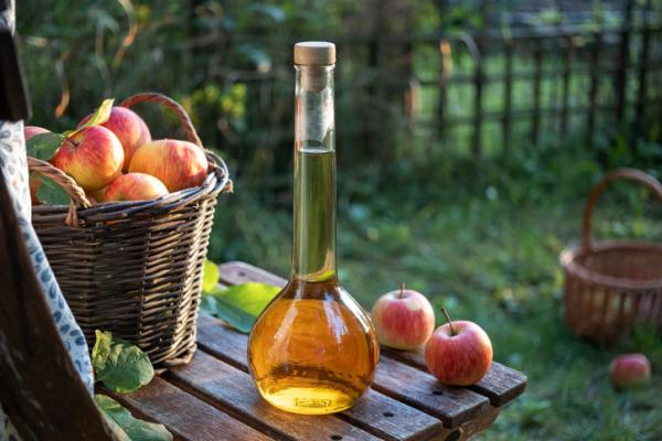 Vinegar for plants: benefits and how to use it - Properties of vinegar for plants and health