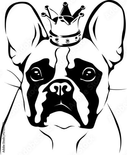Vektor French Bulldog King