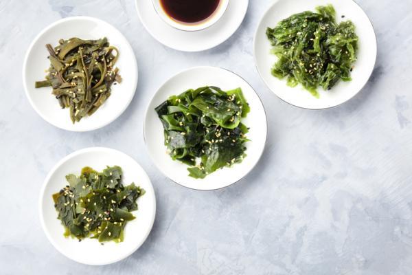 الأطعمة المحظورة في الحمل ولماذا - الطحالب