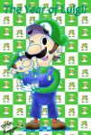 2013: Year of Luigi by AkirasArtWorld