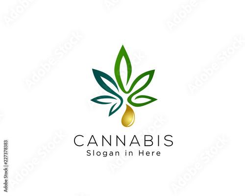 cannabis essence oil drop