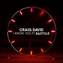 Craig David – I Know You Instrumental ft. Bastille