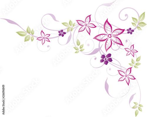 Ranke floral filigran Blumen Blten Pastell