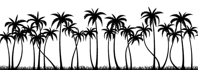 Search photos Category Plants and Flowers > Trees > Palm Tree