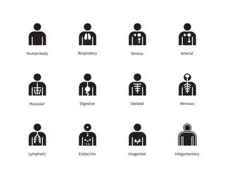 Search photos urogenital