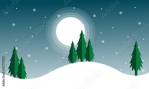 christmas scenery with spruce
