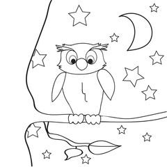 Search photos owl