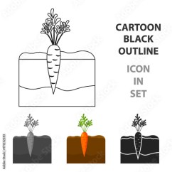 Carrot Plant Diagram Chinese Scooter Ignition Switch Wiring Icon In Black Style Isolated On White Background Symbol Stock Vector Illustration Image And Royalty Free Files Fotolia Com