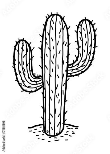 cactus in desert cartoon