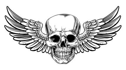 Photos, illustrations et vidéos de squelette oiseau