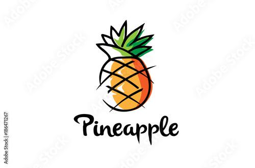 creative artistic pineapple fruit