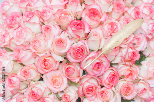 rose pink bouquet roses