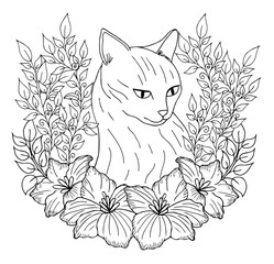 Search photos coloring book page for adults