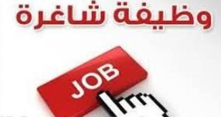 وظائف متاحة بالقاهره والجيزه