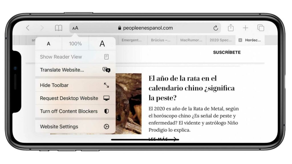 New iOS 14 Safari brings Translation Feature, Privacy Report and more - T3XH