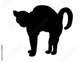 """""""Katze macht Buckel"""" Stockfotos und lizenzfreie Vektoren ..."""
