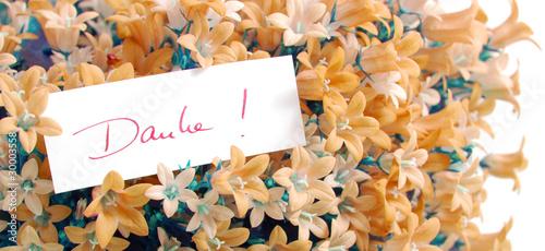 Danke in Blumen Stockfotos und lizenzfreie Bilder auf