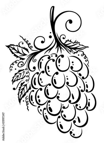 Wein Ranke Weinbltter Weintrauben vector Stockfotos