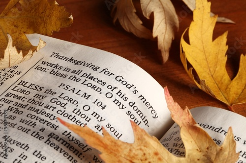 open bible and autumn