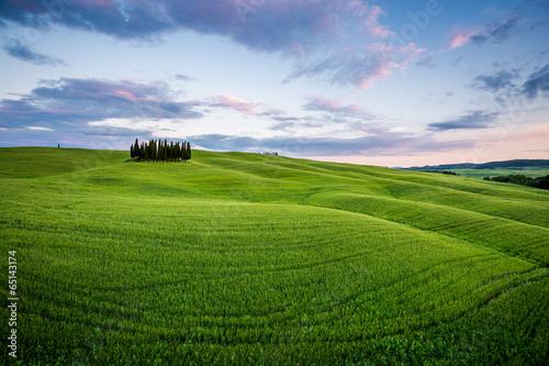 Toscana paesaggio rurale con cipressi al tramonto Immagini e Fotografie Royalty Free su