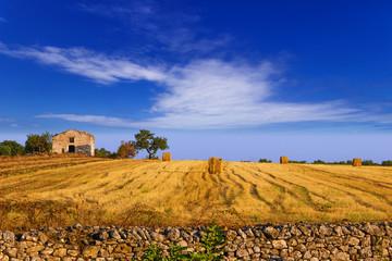 Cerca immagini paesaggio rurale
