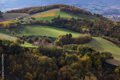 Paesaggio rurale marchigiano Immagini e Fotografie Royalty Free su Fotoliacom  File 73190394