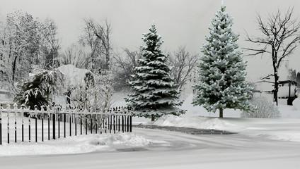 Cerca immagini paesaggio invernale