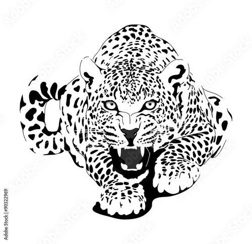 Panther Tiere Tiere Zum Ausmalen Tiere