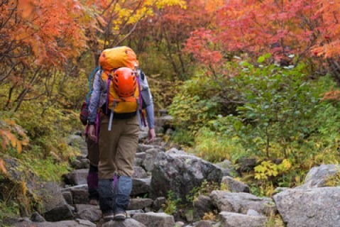 登山者 紅葉