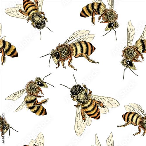 bee seamless pattern in