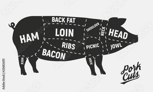 pork butcher cuts diagram light fixture wiring uk meat vintage poster for shop retro vector illustration