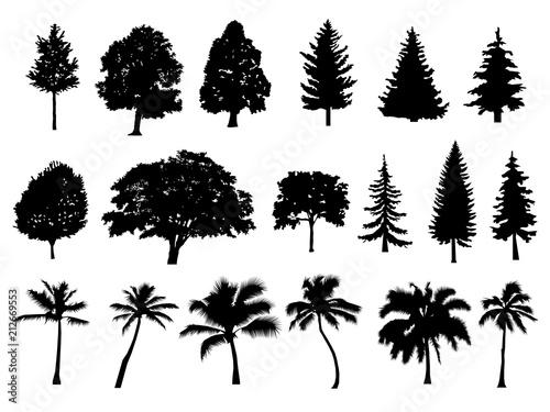 trees set silhouette coniferous