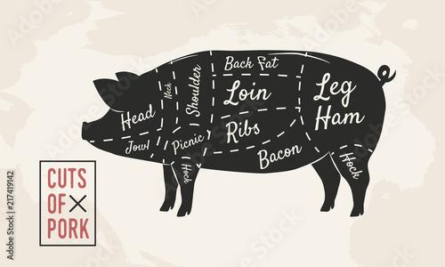 pig cuts diagram 1987 yamaha virago 535 wiring of pork meat butcher vintage poster vector illustration