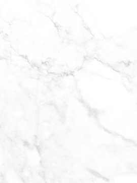 White Marble Seamless : white, marble, seamless, Marbling, Seamless, Photos,, Royalty-free, Images,, Graphics,, Vectors, Videos, Adobe, Stock