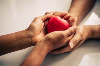 243,892 BEST Holding Hands Heart IMAGES, STOCK PHOTOS & VECTORS | Adobe Stock