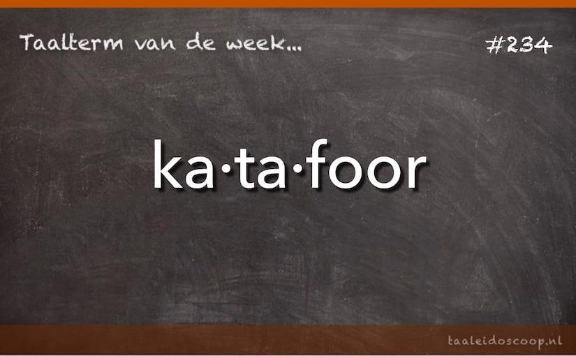 Taalterm van de week: Katafoor