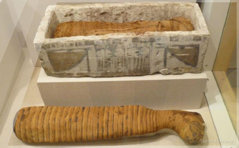 Wat hebben de woorden 'sarcofaag' en 'carnivoor' met elkaar gemeen?