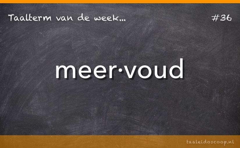 TVDW: Meervoud