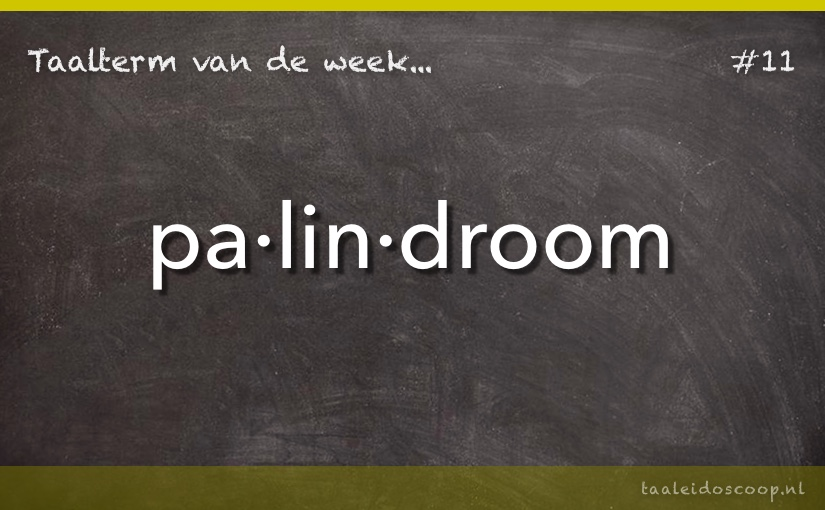 TVDW: Palindroom