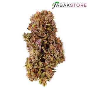 Purple-Haze-CBD-Blüte