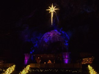 nativity-in-the-grotto-cave