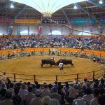 宇和島市営闘牛場