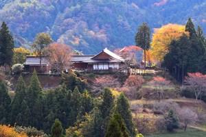 歴史の里 田峯城