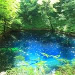 青池(十二湖)