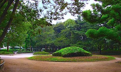 松戸中央公園(陸軍工兵学校跡)