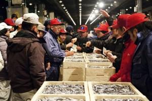 福岡市中央卸売市場鮮魚市場(長浜鮮魚市場)