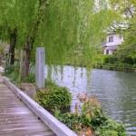 柳川・水辺の散歩道