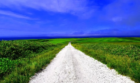白い道(白い貝殻の道)