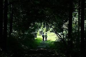 湖尻自然探勝歩道
