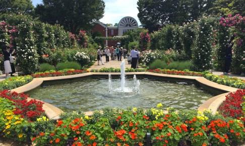 港の見える丘公園イギリス山・香りの庭(沈降花壇)